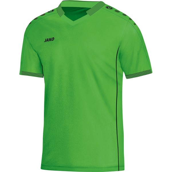 Jako Trikot Indoor Herren soft green 4116-22